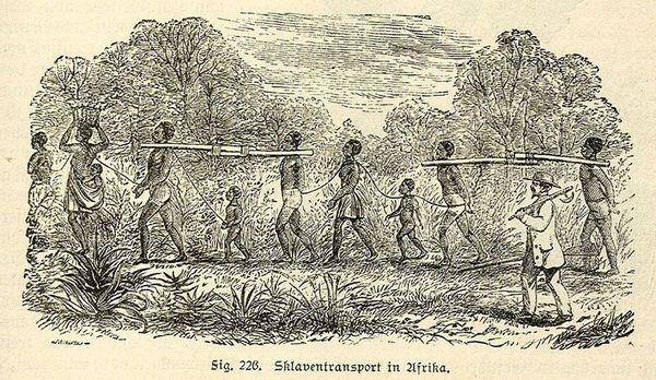 Slaventransport in Afrika, gravure uit Lehrbuch der Weltgeschichte oder Die Geschichte der Menschheit, William Rednbacher, 1890