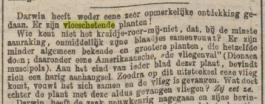 """Op 20 november 1874 maakte het Algemeen Handelsblad in de rubriek  Allerlei' melding van een opmerkelijke ontdekking van Darwin: """"Er zijn vleeschetende planten!"""" Het artikel beschrijft dat de plant een vlieg vangt, zijn bladen sluit en dan: """"Hij eet ze."""""""