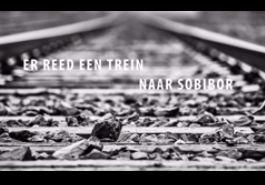Er reed een trein naar Sobibor