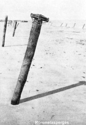 Rommelasperges
