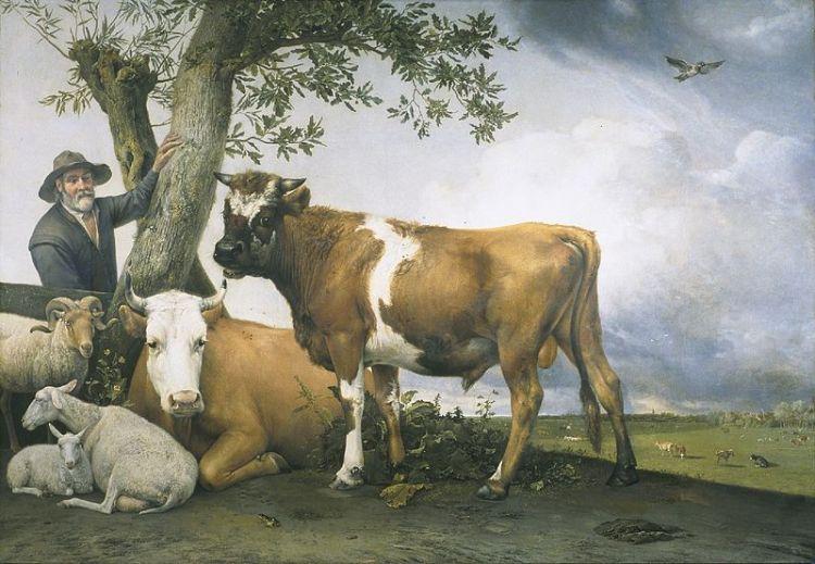 De stier - Paulus Potter, 1647 (Mauritshuis)