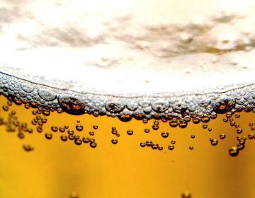 Bier (stck.xchng)