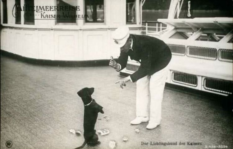 Wilhelm II met Senta op de Keizerlijke jacht, Senta stierf in 1927