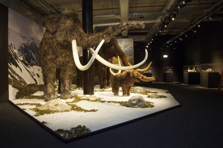Mammoeten (Amsterdam EXPO)