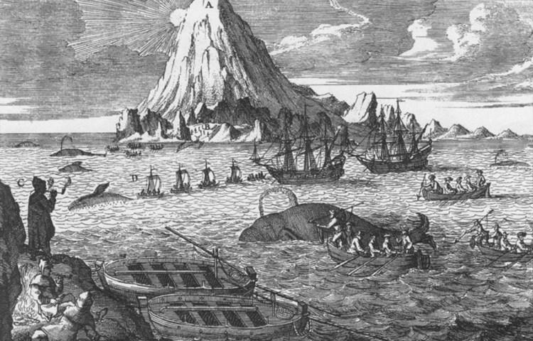 Anonieme gravure uit de 18e eeuw met Nederlandse walvisvaarders jagend op Groenlandse walvissen bij Jan Mayen.