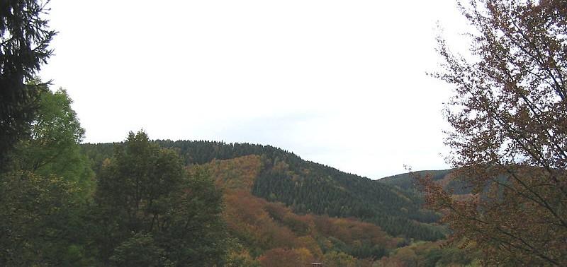 Hürtgenwald - cc