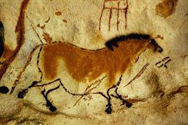Rotstekening in de grot van Lascaux, Frankrijk -  De overvloed aan levendige dierschilderingen op rotswanden, niet alleen in de Dordogne, maar bijvoorbeeld ook in de Sahara, laten zien dat onze band met het dier al vele tienduizenden jaren intiem en hecht is.