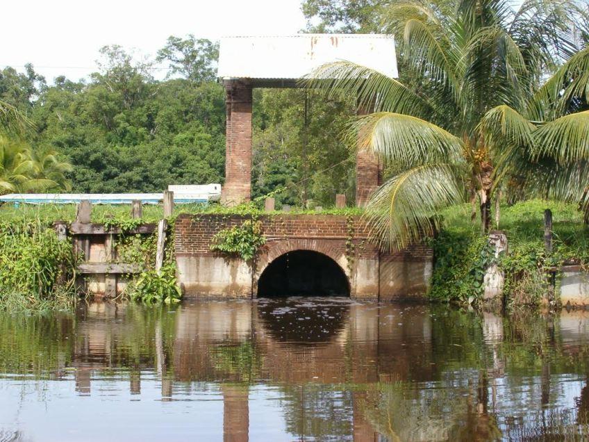 De uitwateringssluis van de plantage Reynsdorp - Foto: Philip Dikland