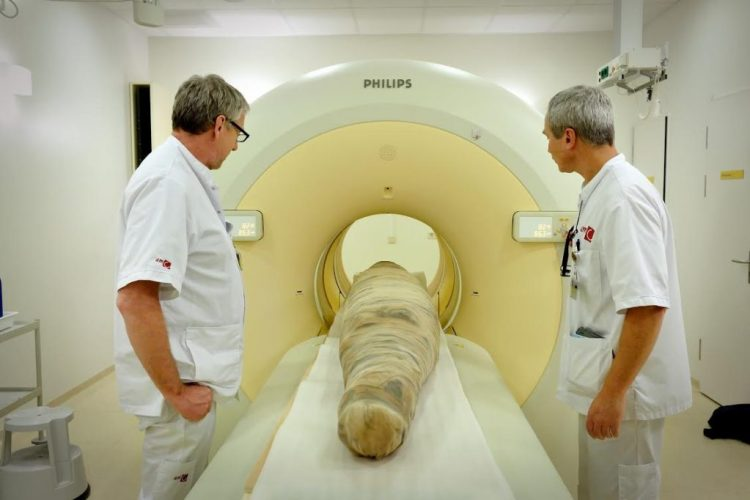 Egyptische krokodillenmummie in CT scan AMC - Foto Mike Bink