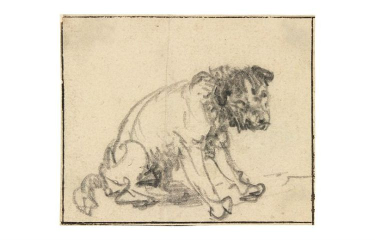 De ontdekte tekening van Rembrandt (Herzog Anton Ulrich-Museum)