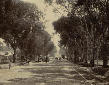 Tram te Batavia, circa 1910 (KITLV)