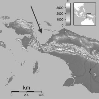 Geelvinkbaai (Wiki Commons)