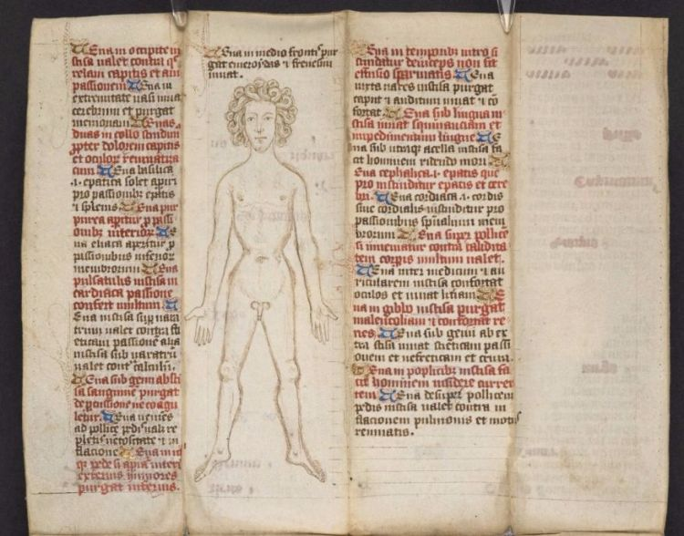 Aderlatingsman in MS 28725, ca. 1463 (British Library)