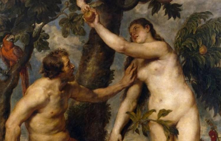 De zondeval en de appel volgens peter Paul Rubens