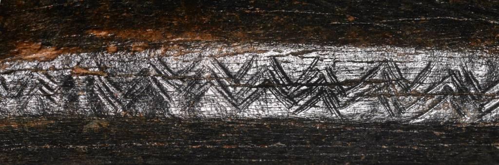 Close-up van het versierde bizonbot (RMO)