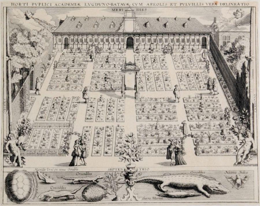 De Leidse Hortus anno 1610 (Woudanus)