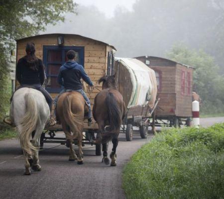 Zigeunerwoorden in het Nederlands- Zigeuners (cc - Pixabay - WenPhotos)