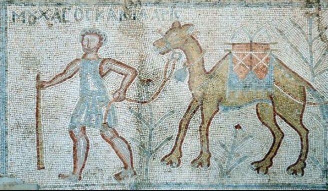 Mozaïek van een karavaan uit Bosra in Syrië (in het plaatselijke museum, hopelijk nog steeds). In de Romeinse tijd kwamen dromedarissen ook voor in de Lage Landen.