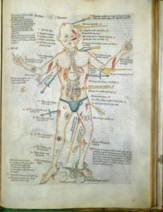 Een wondenman - illustratie bij een vijftiende-eeuws wondenboek (CC BY 4.0 - Wellcome Images - wiki)