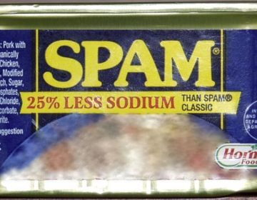 Blik spam (CC BY-SA 3.0 - Cypher789 - wiki)