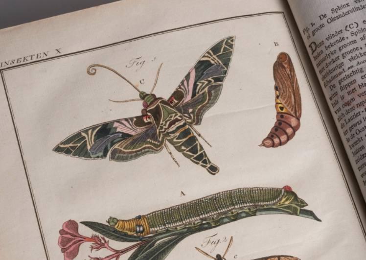 KB koopt eeuwenoude Nederlandse kinderencyclopedie