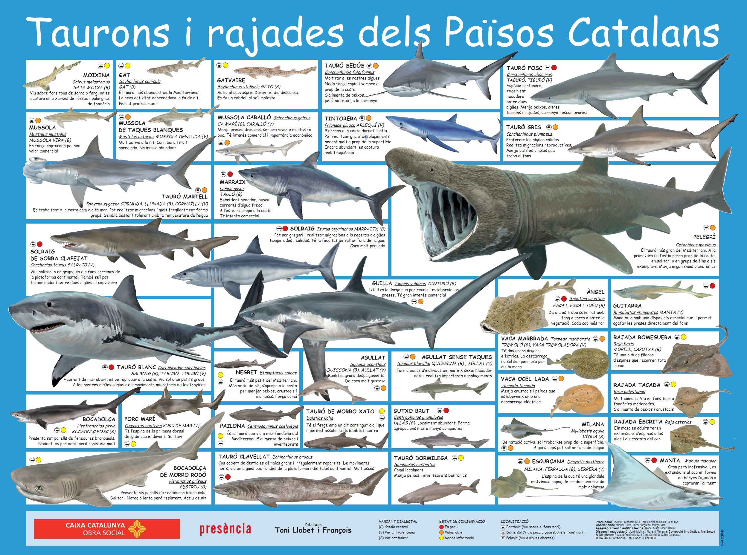 Images About Animals Aquatics