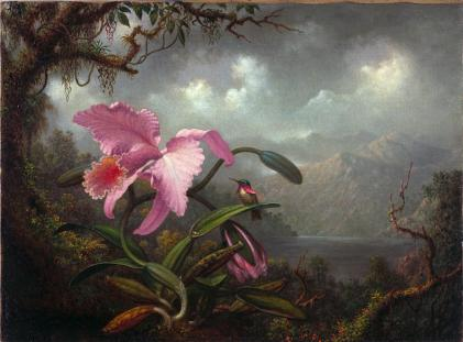 Martin Johnson Heade; Orchid and Hummingbird; c.1885; oil on canvas; 38.4 x 51.4 cm; Fine Arts Museums of San Francisco