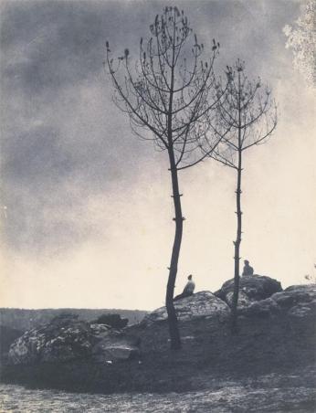 Eugène Cuvelier; Pras de la Caverne; early 1860s; salted paper print from paper negative; The Metropolitan Museum of Art