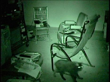 Bruce-Nauman-Mapping-the-Studio-I-Fat-Chance-John-Cage-2001