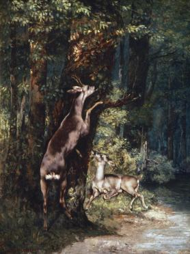 Jean Gustave Courbet; Roe-Buck and Doe in the Forest; 1868; 130 x 97 cm