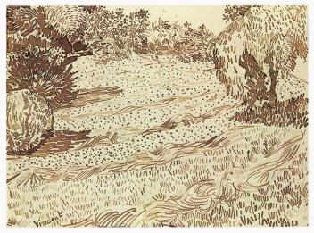 Vincent van Gogh; Garden with Weeping Tree; 1888; pencil, reed pen and brown ink on wove paper; 24.2 x 31.6 cm