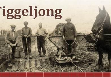 Volle zaal tijdens lezing Tiggeljong
