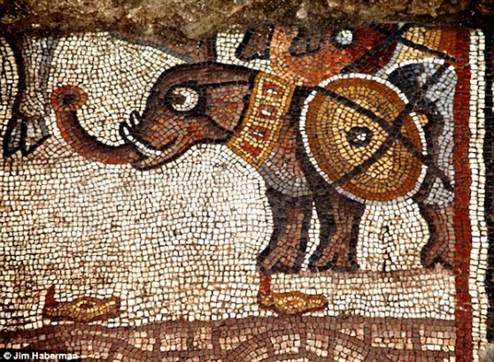 israel-mosaic-03