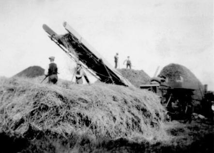 Autumn 1937. Haymaking at Charney Bassett.