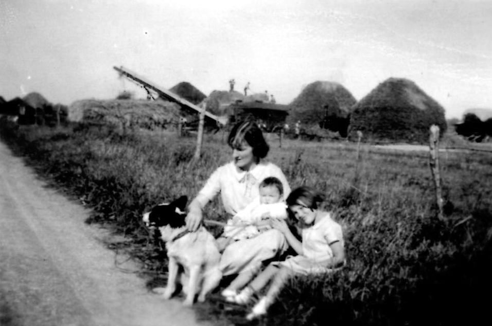 Autumn 1937. In fields at Charney, haymaking in background.