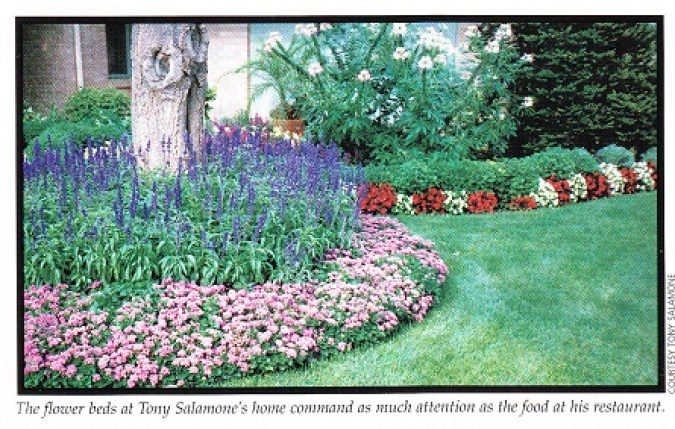 Salamone, Tony garden