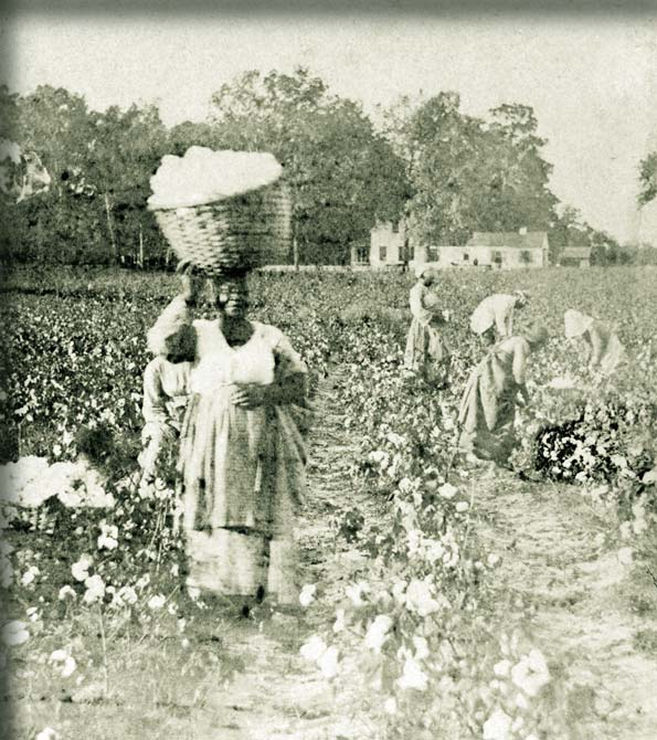 June 11: New York Historical Society-Slavery and Cotton, Economics of the North? (2/3)