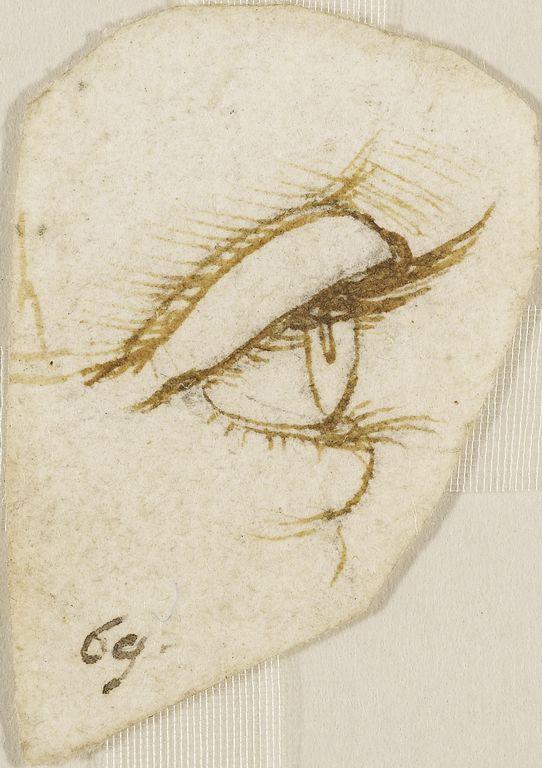 Eye by Leonardo da Vinci