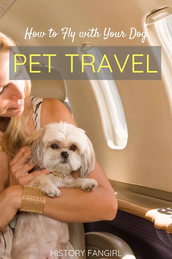 How to Fly with Your Dog in the Cabin