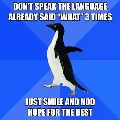 Foreign Language Travel Meme
