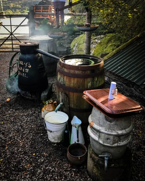 Making Moonshine