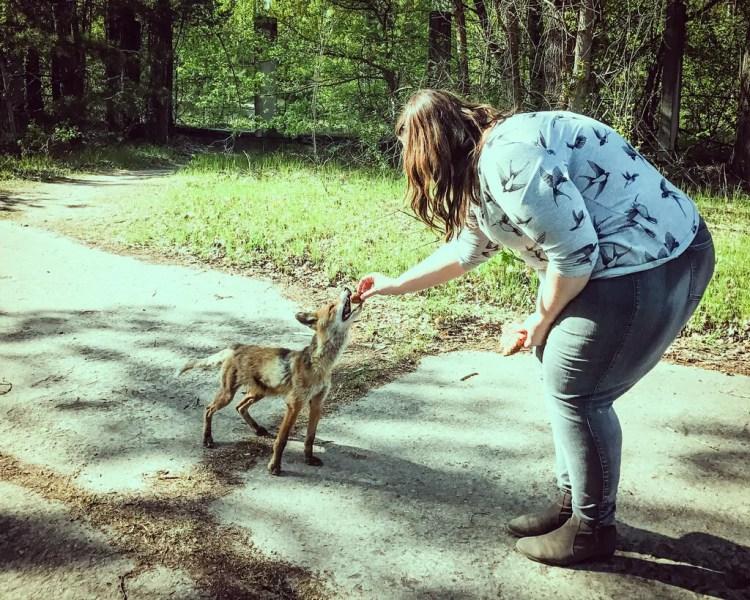 Ukraine - Chernobyl - Feeding the Fox
