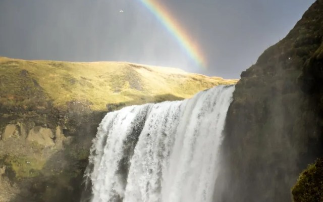 10 Perfect Icelandic Souvenirs Plus Iceland Shopping Tips