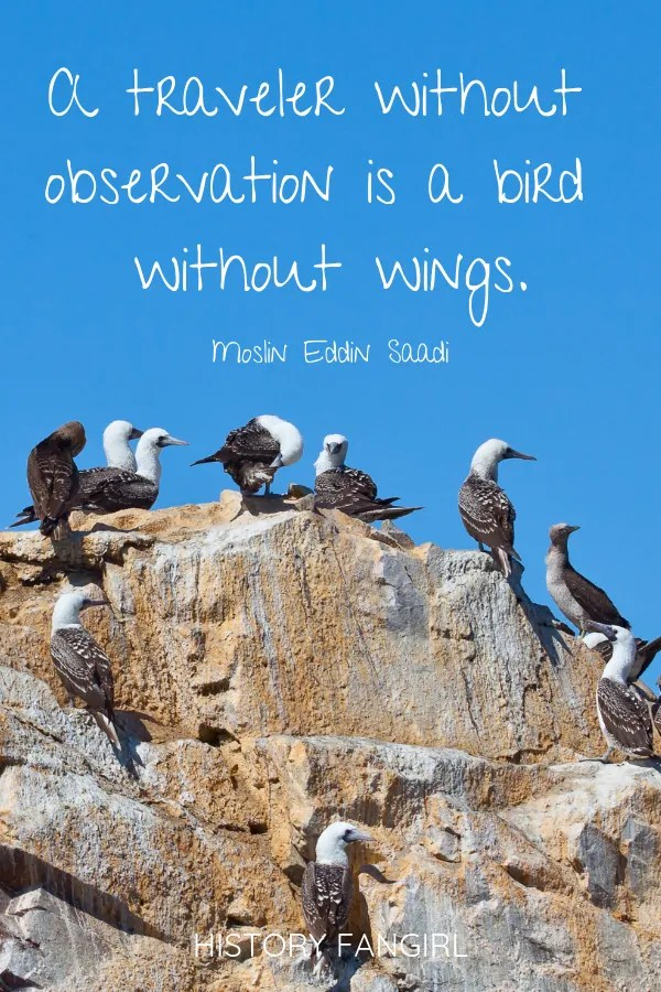 A traveler without observation is a bird without wings. Moslih Eddin Saadi quotes about travel changing you