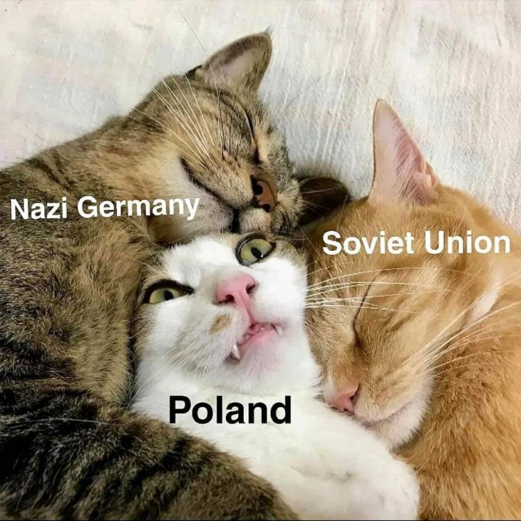 poland memes