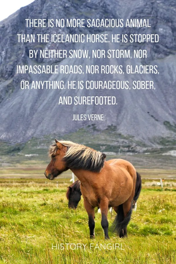 quote about Icelandic horses