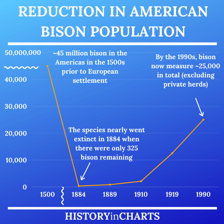 Read more about the article The Devastation of the American Bison Population