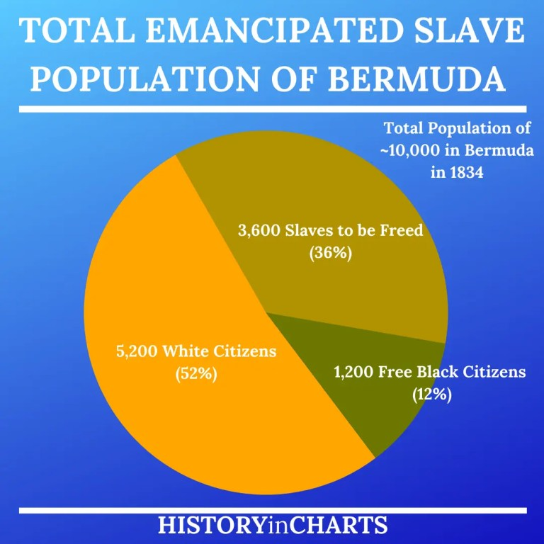 Read more about the article The Founding and History of the Bermuda Islands