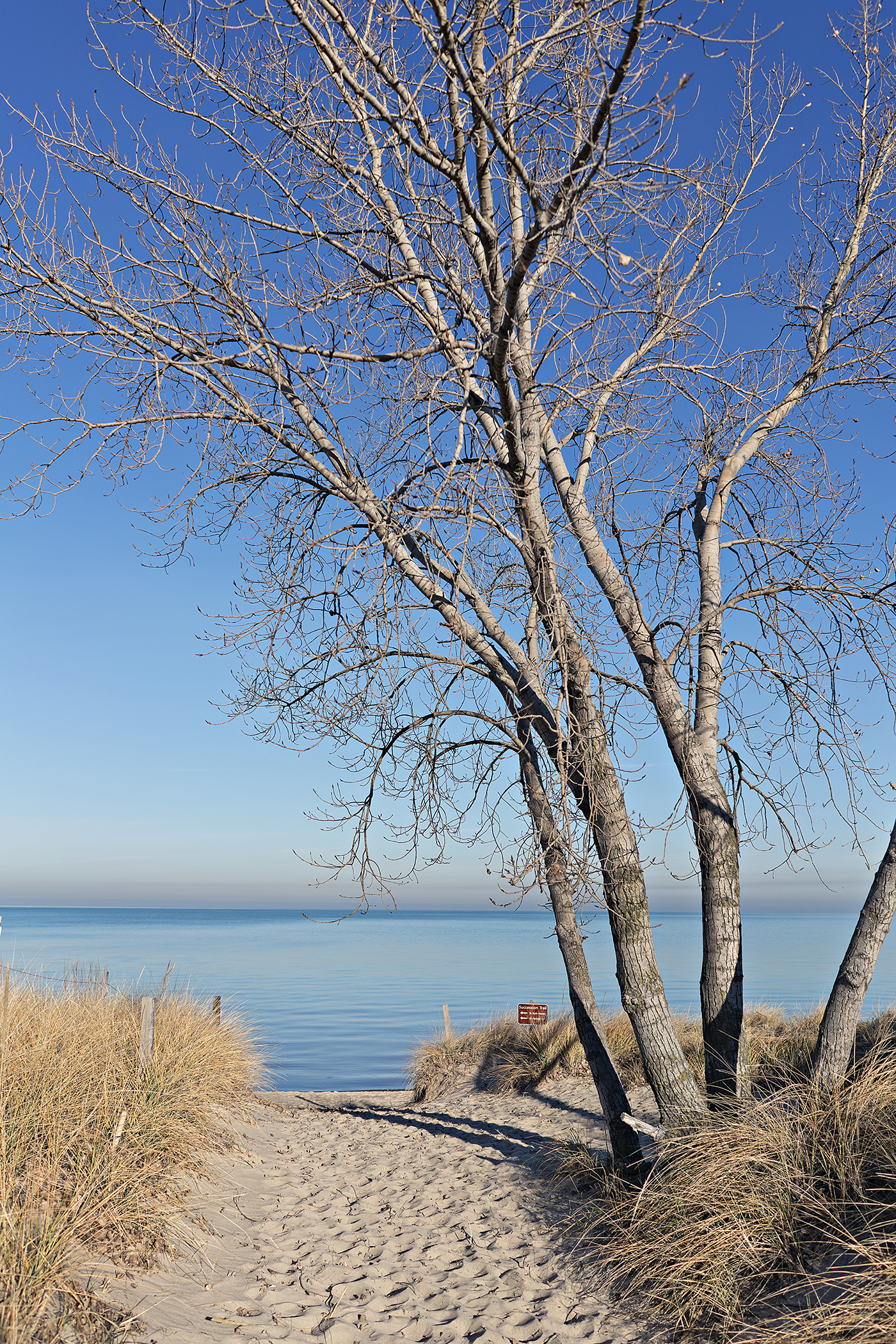 West Beach, The Indiana Dunes, Travel