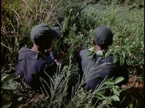 Training_in_South_Vietnam_1962-420.000